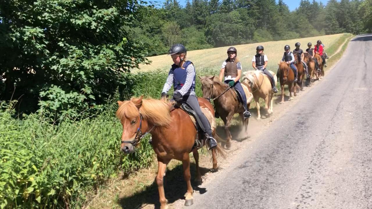 Første tur på ridelejr i uge 27