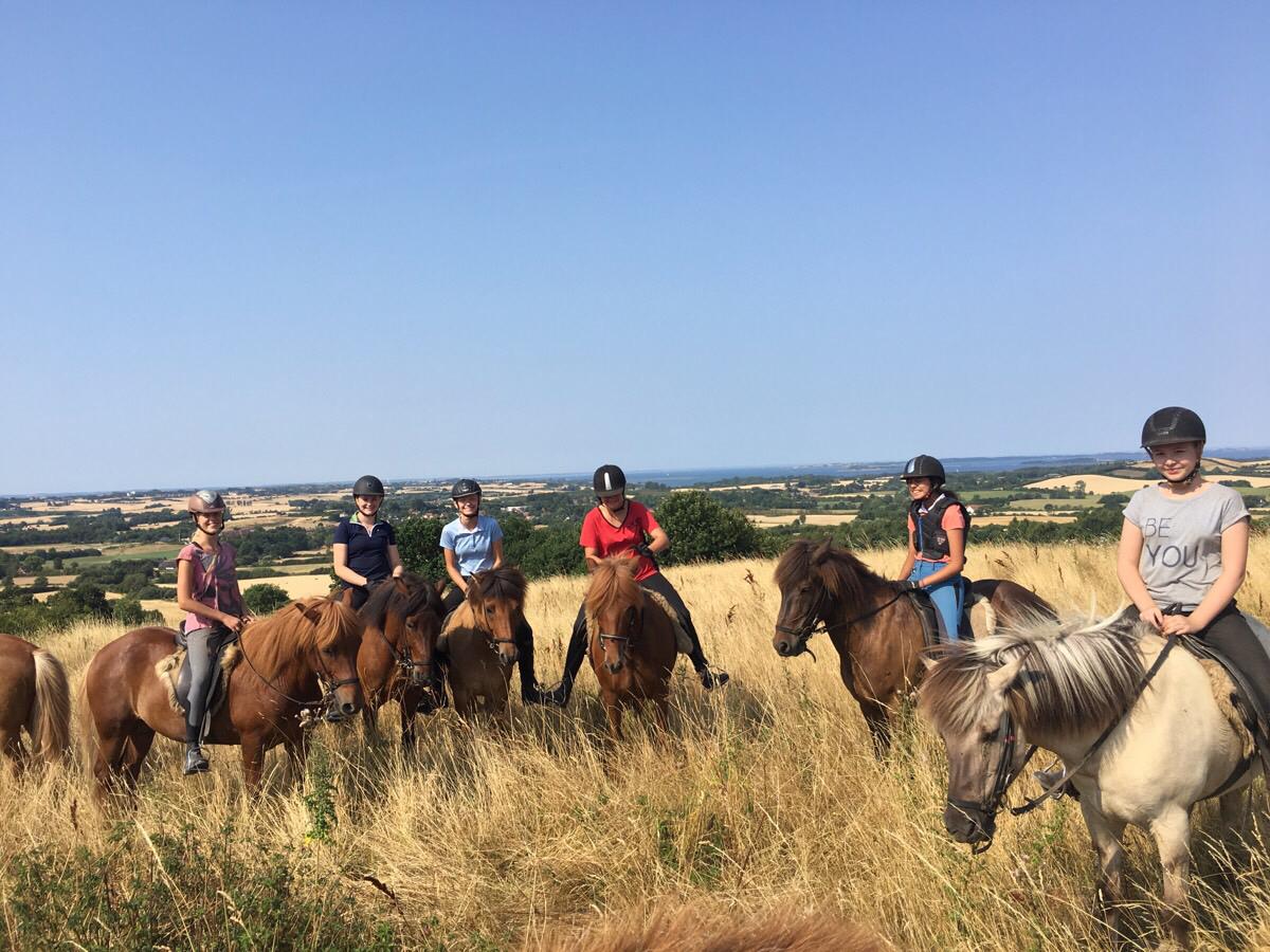Ridelejren i kilometerskoven