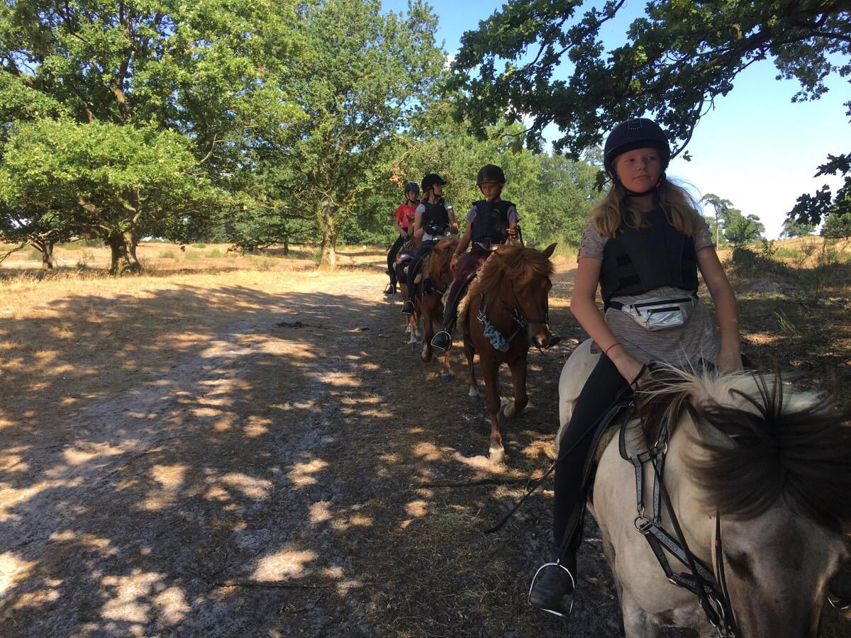 Islandskabsturen med ridelejren i uge 31