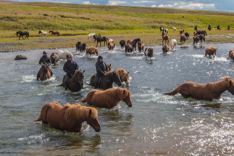 2. Dagstur på Island