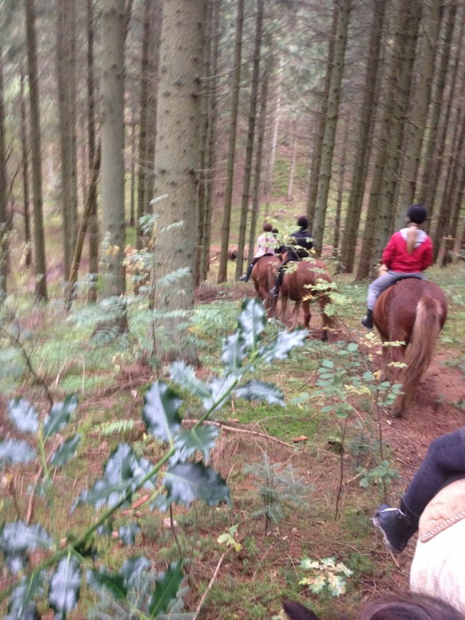 First ride on ridelejren in the autumn holidays