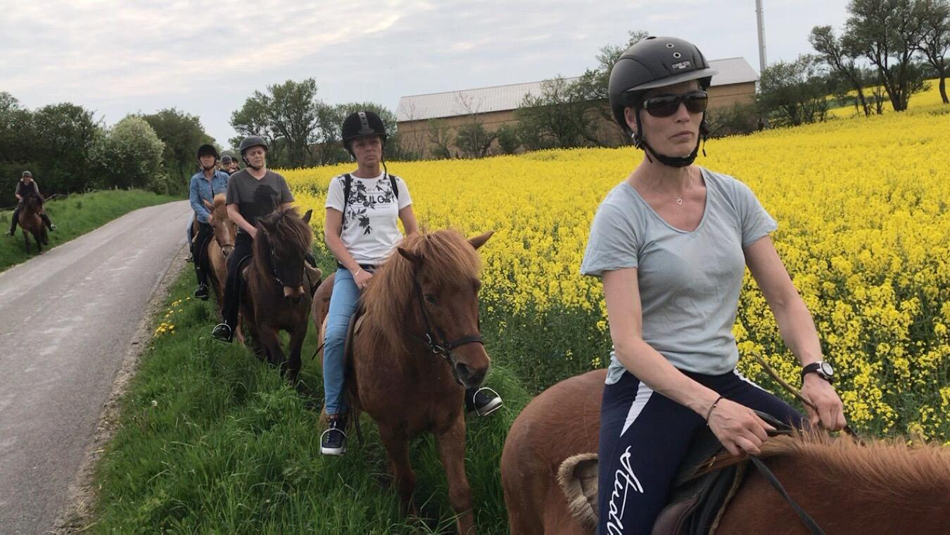 En ridetur med 8 kolleger fra Korup Skole