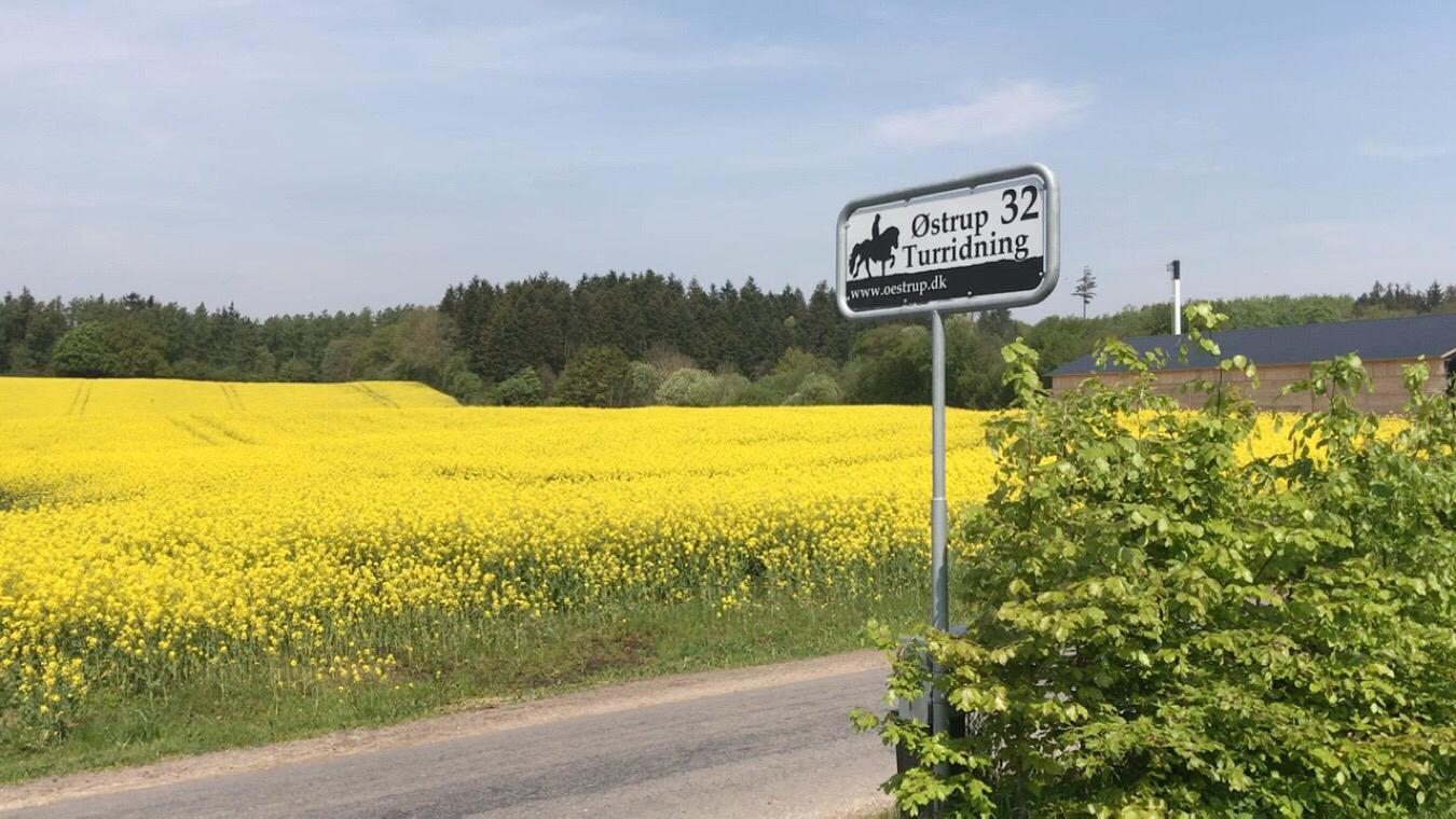 Løbetur til Trebjerg