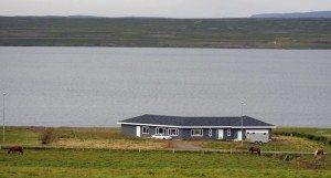 Logiet for Ridning på Island