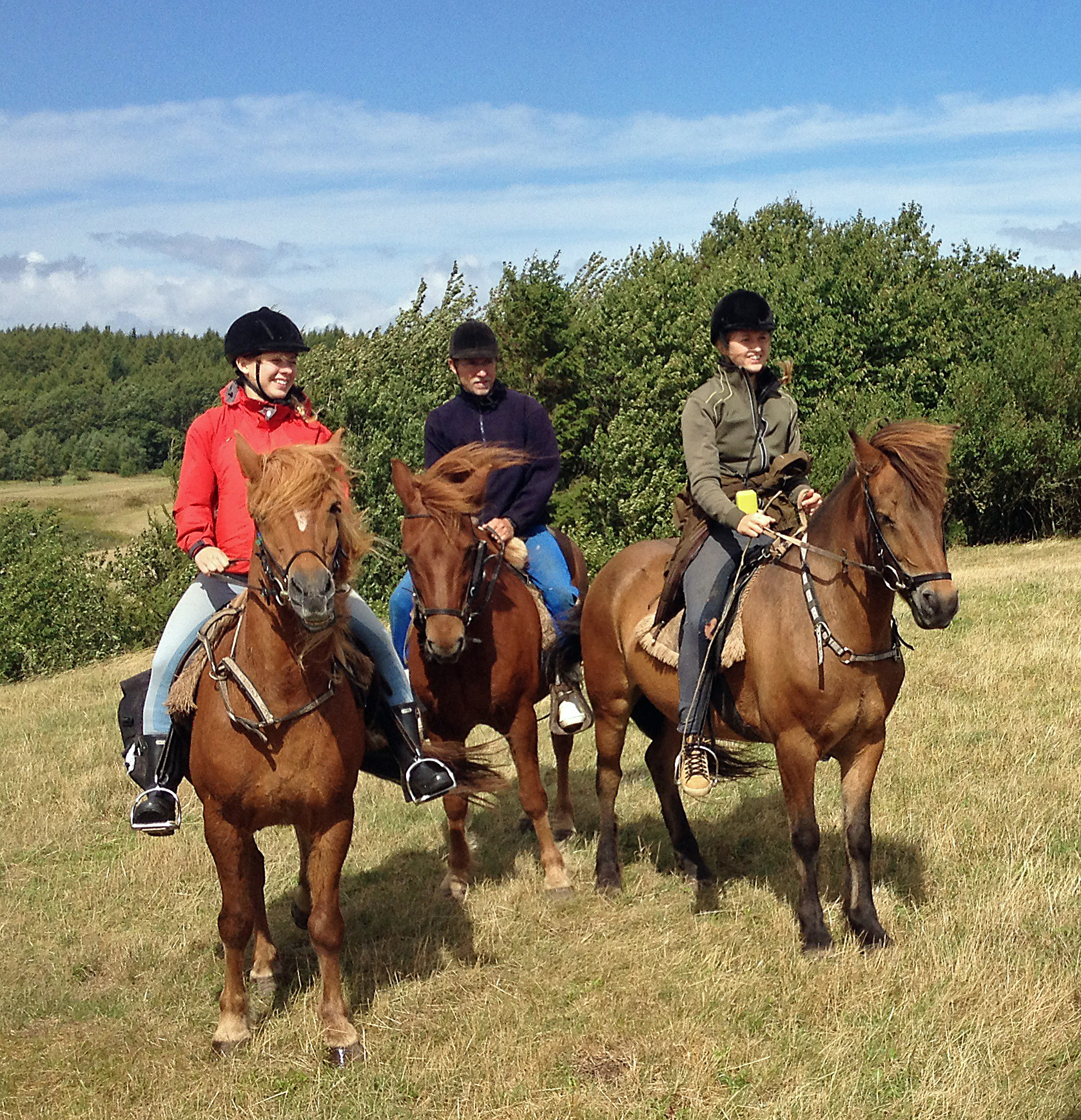 Hestene er klar og har kræfter til de lange ture.
