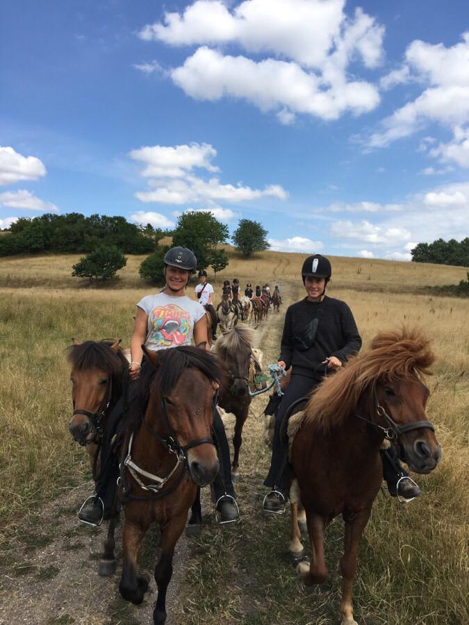 Islandskabsturen med ridelejren i uge 28