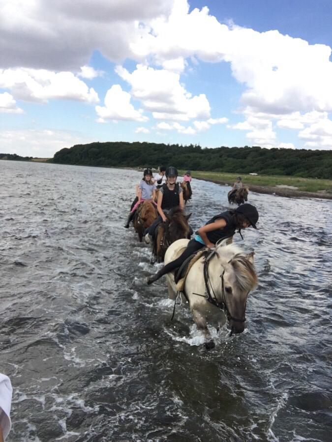 Strandturen med ridelejren i uge 28