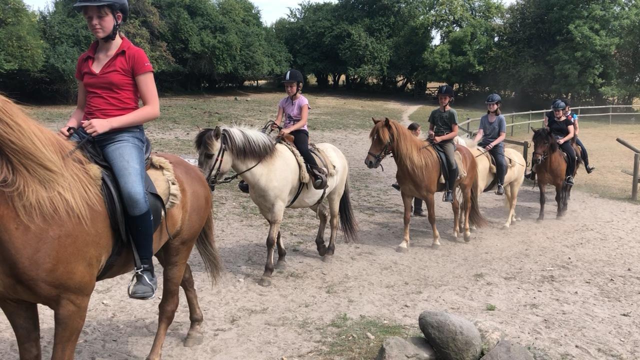 Første tur på ridelejren i uge 29