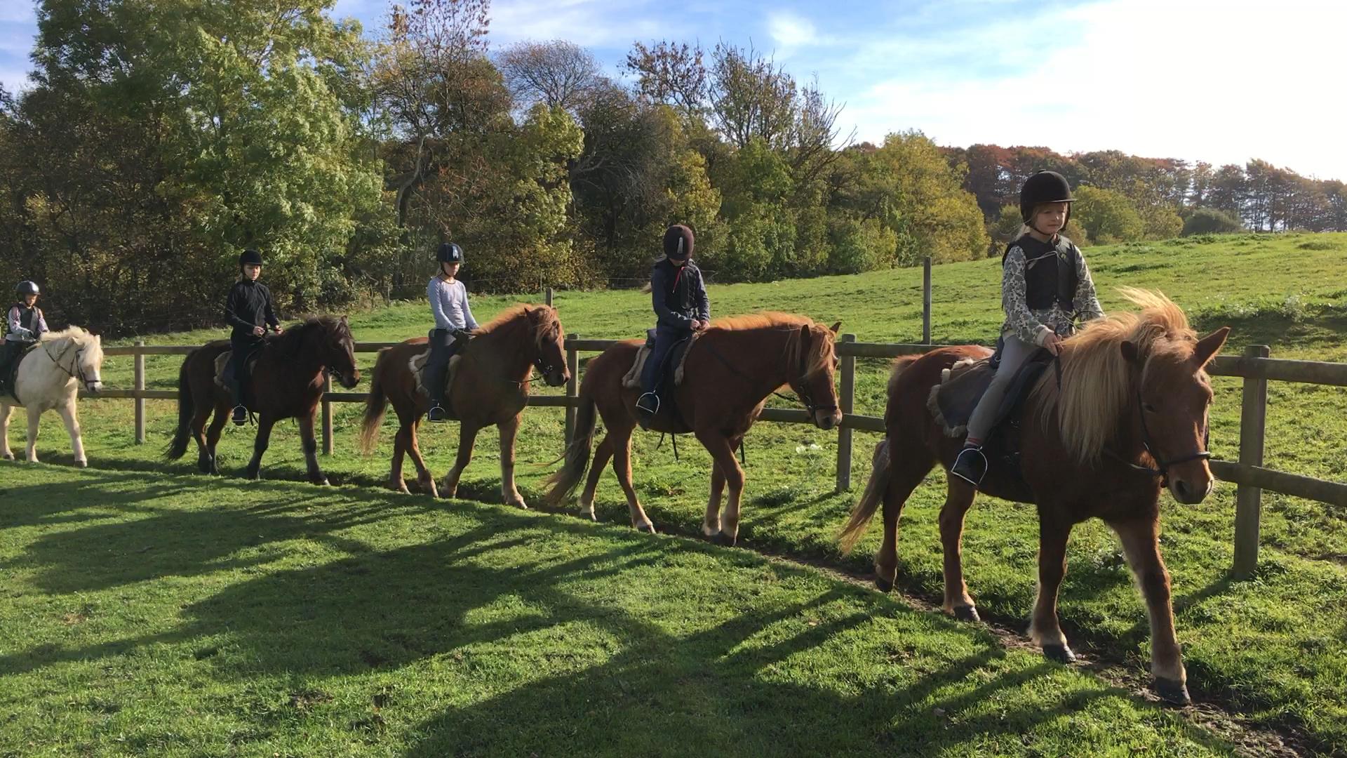 Første tur på første ridelejr i efterårsferien