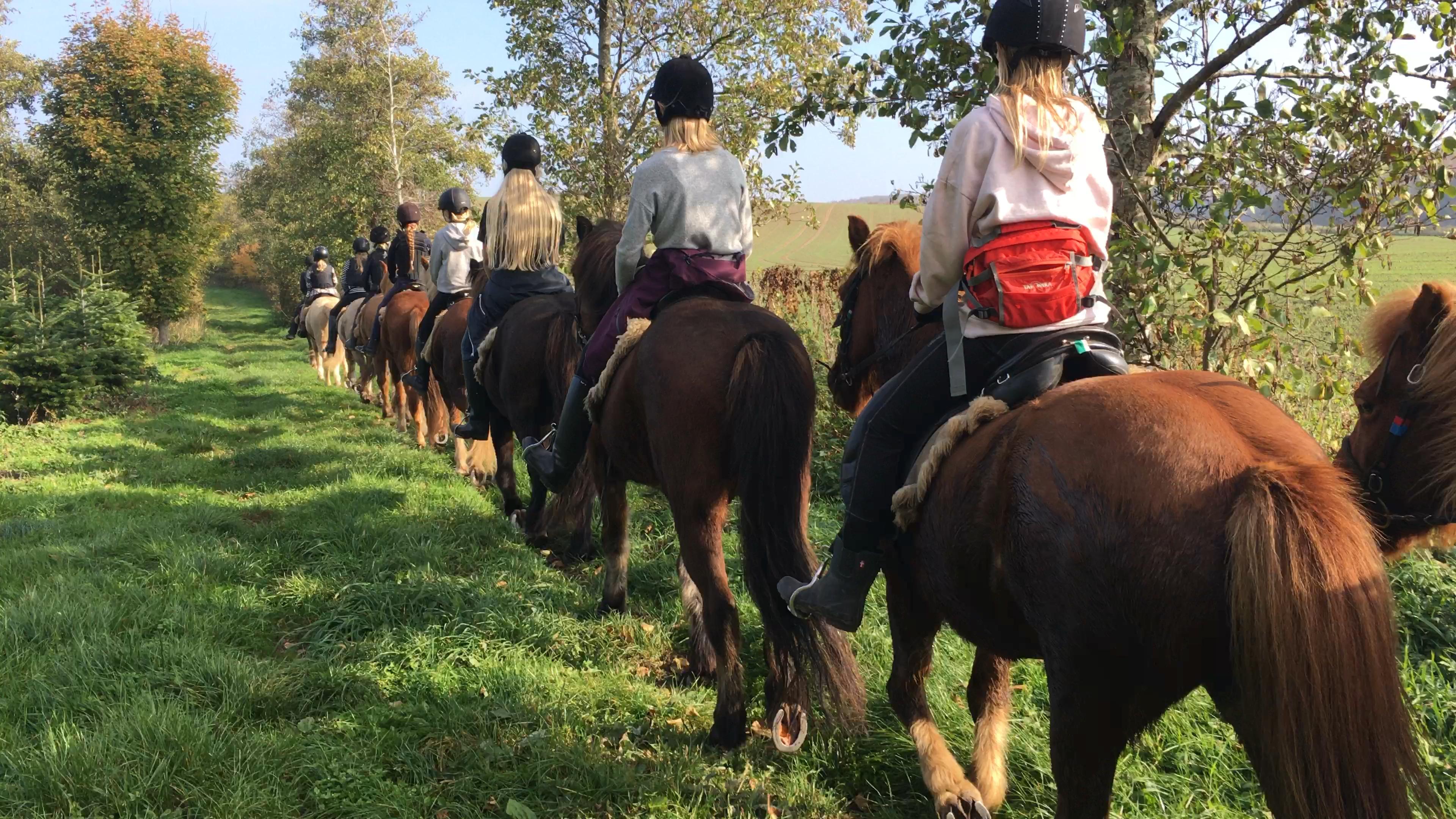 Video fra sidste tur på ridelejren