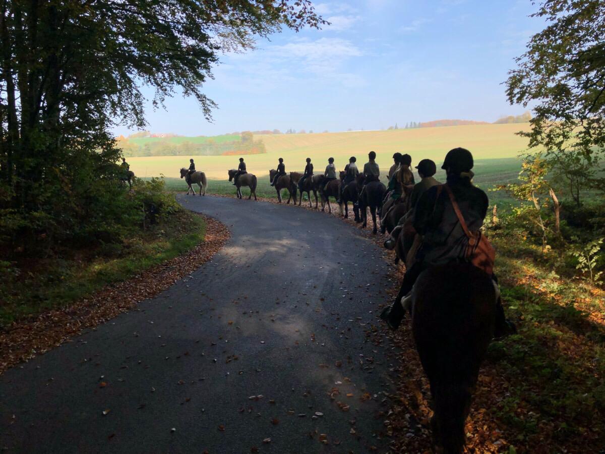 Sidste tur på første ridelejr i efterårsferien