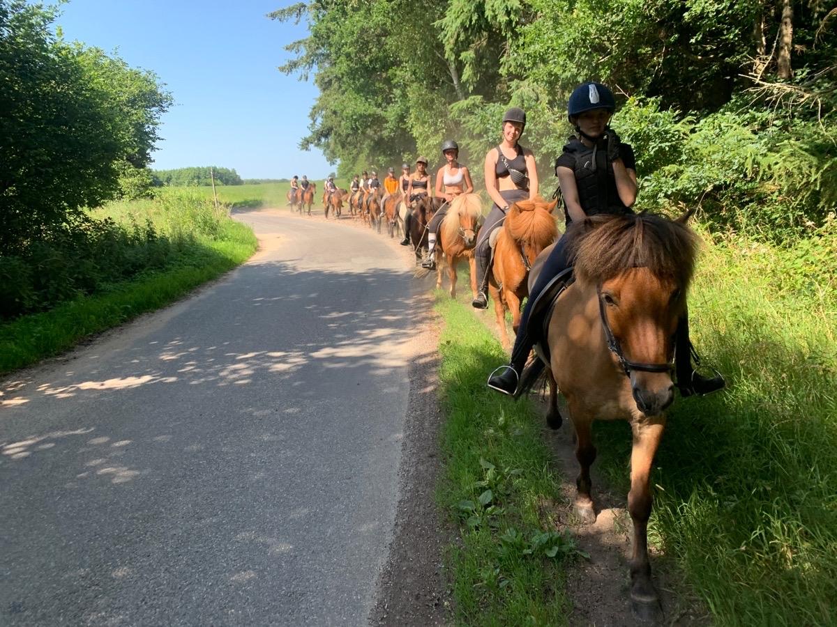 Sidste ridetur for ridelejr uge 28