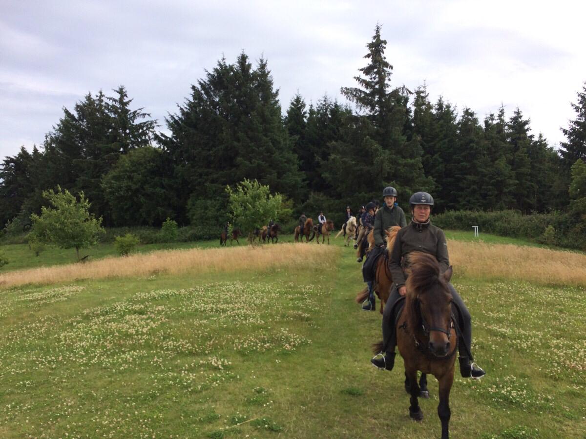 Bakketur på ridelejer i uge 28