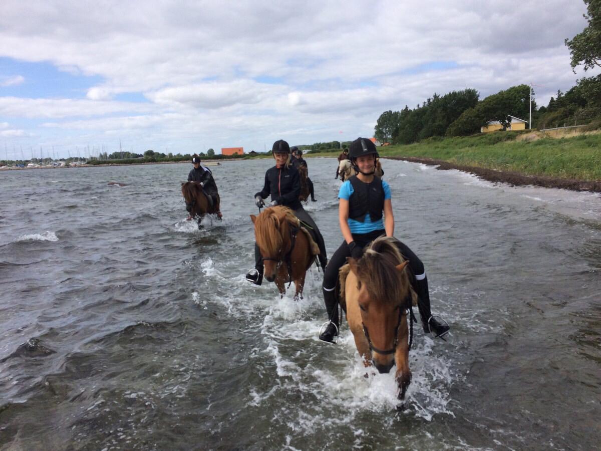 Strandtur på ridelejer i uge 28