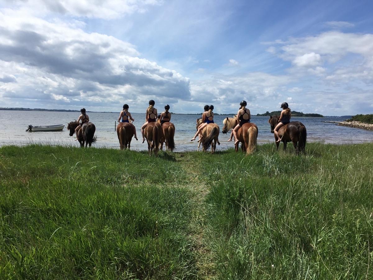 3. dag på ridelejr i uge 27