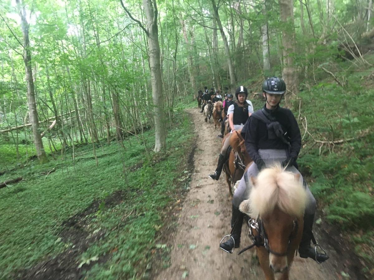 1. Dag på ridelejr uge 28