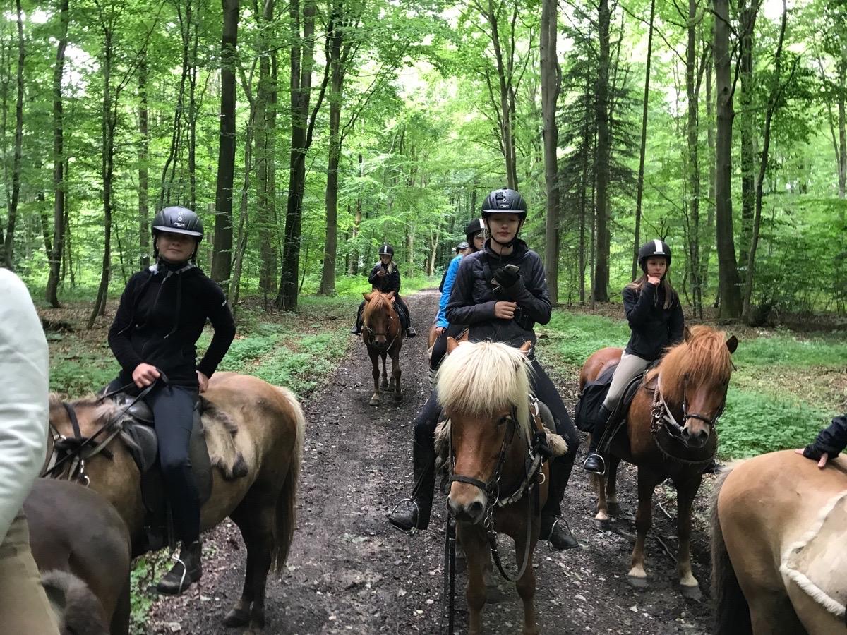 2. Dag på ridelejr i uge 28
