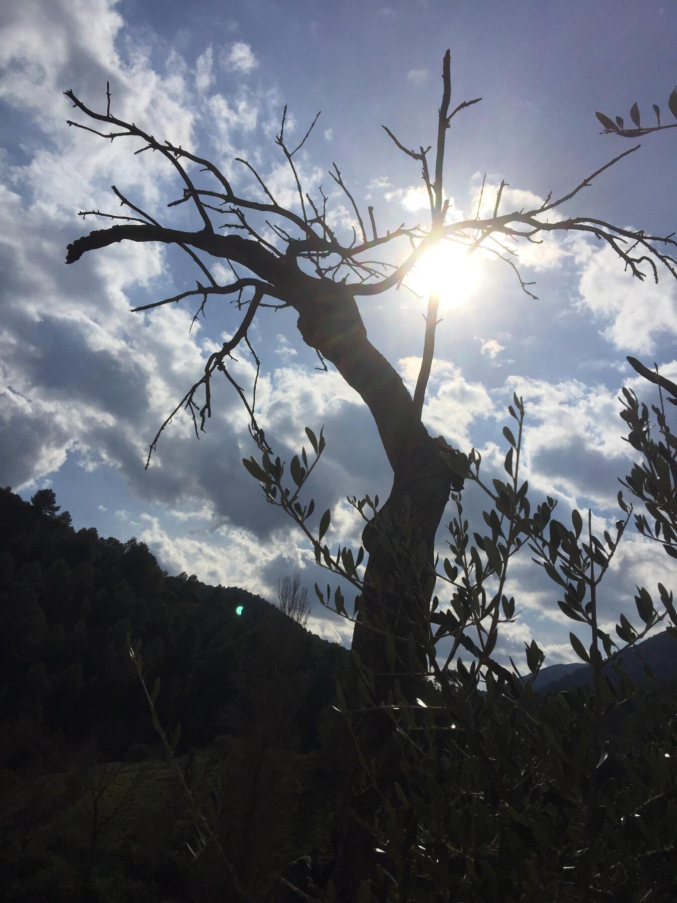 En tur på 7 km langs Rio Turon