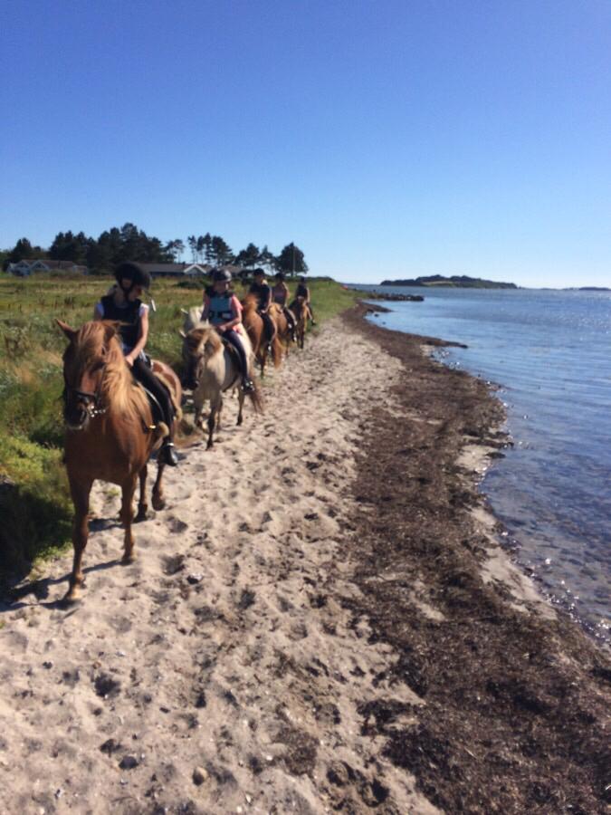 Ridelejrens strandtur