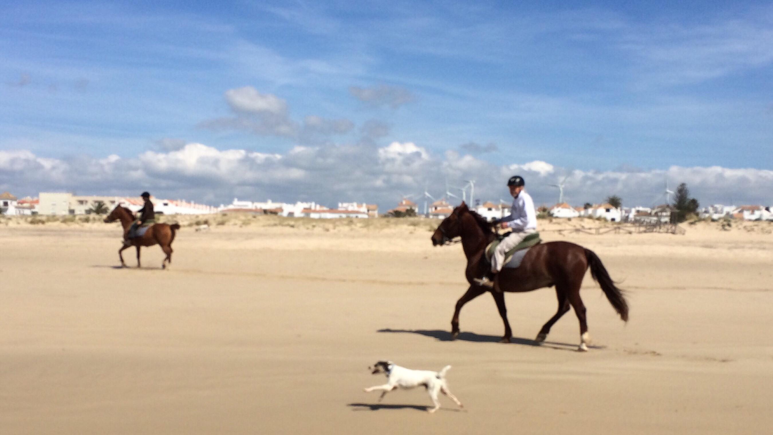 Ridetur på stranden i Zahara