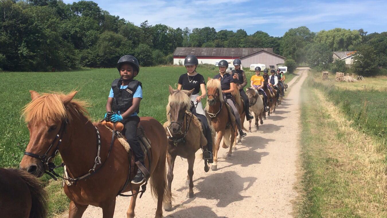 Svanningebakker heldagstur ridelejr uge 29