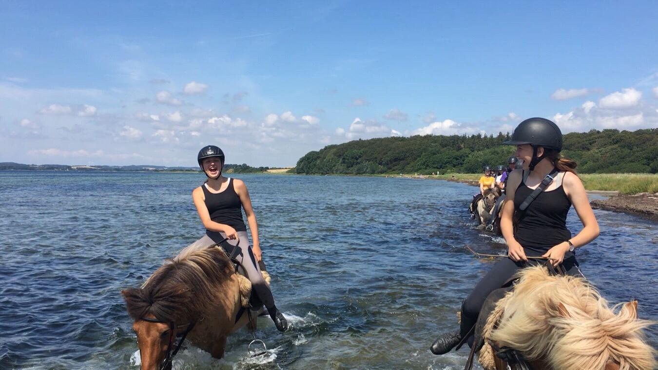 Strandturen til Faldsled ridelejr uge 29