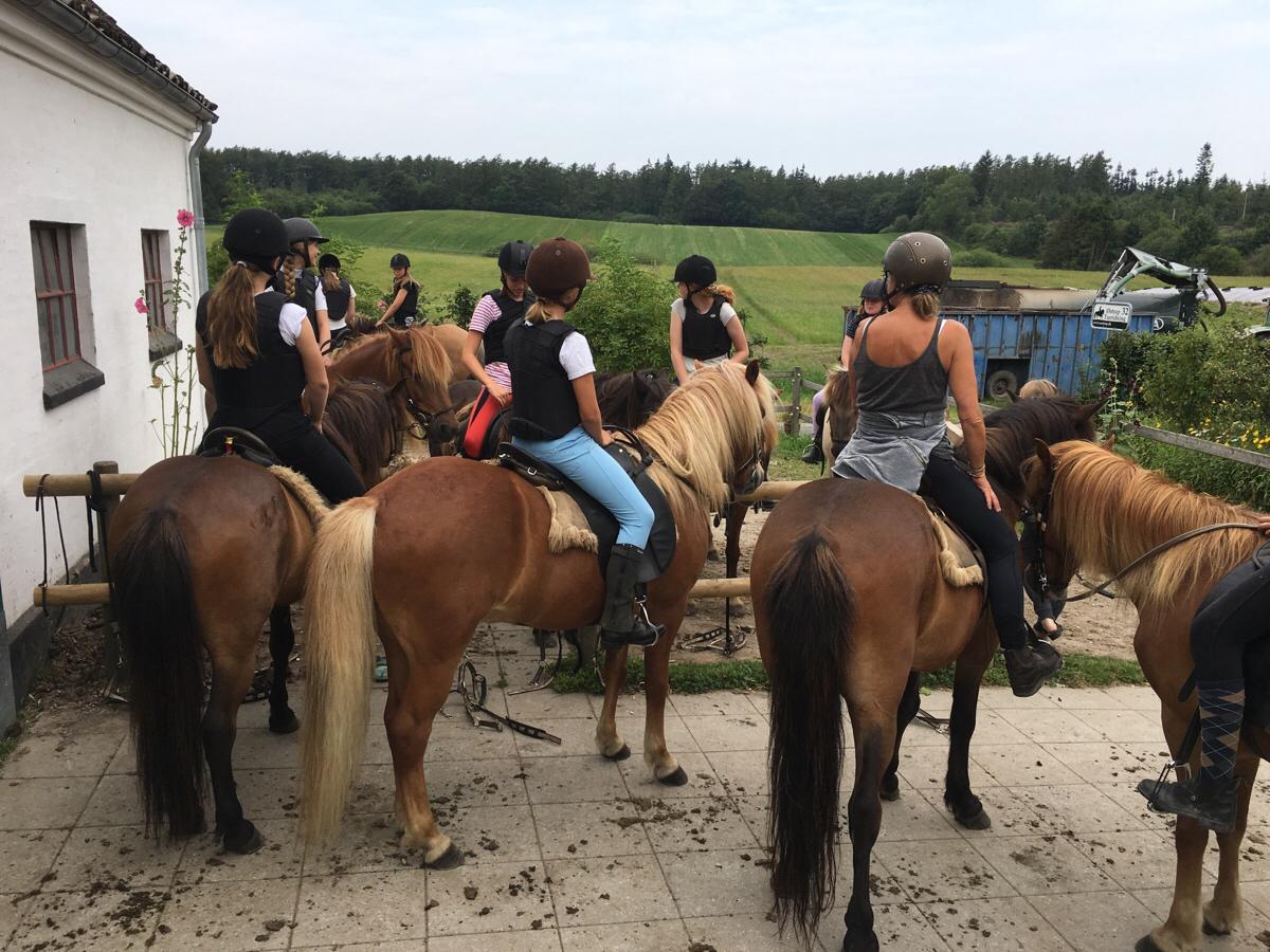 1. Tur på ridelejr uge 31