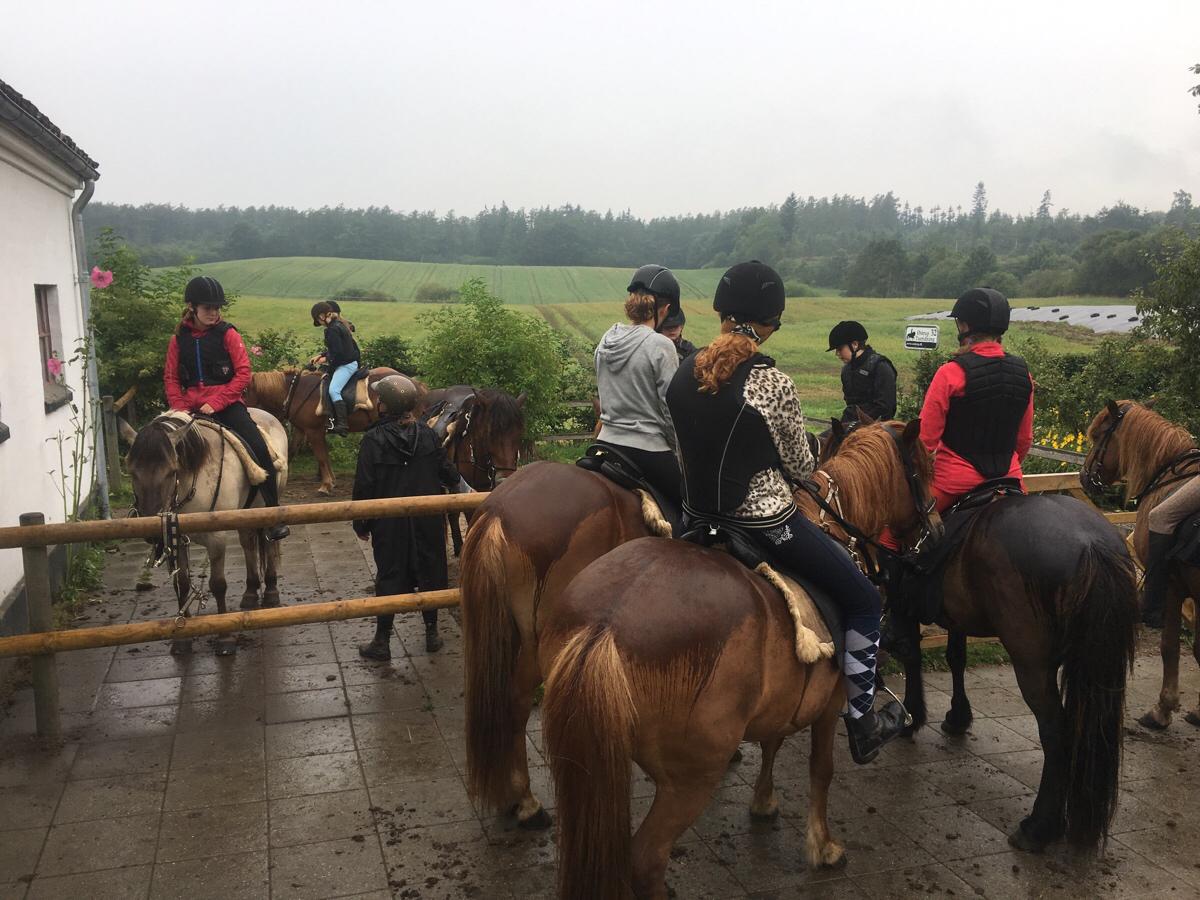 2. Dag på ridelejr uge 31