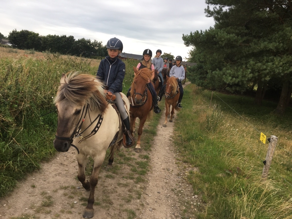 Riding Camp day 2