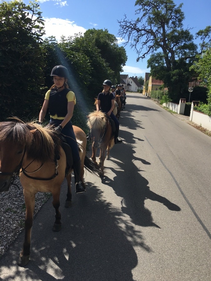Riding Camp day 3