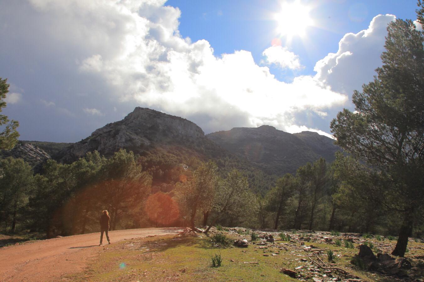 En køre/gåtur i bjergene