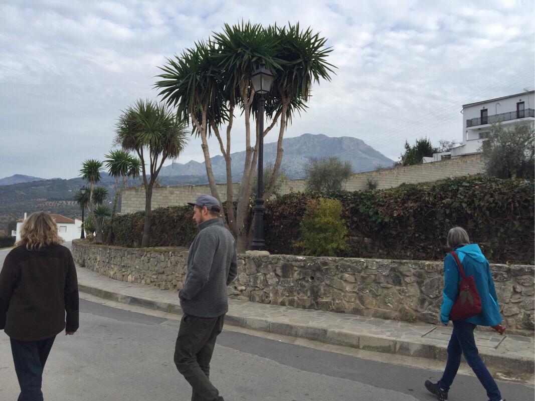 Vandretur i El Burgo