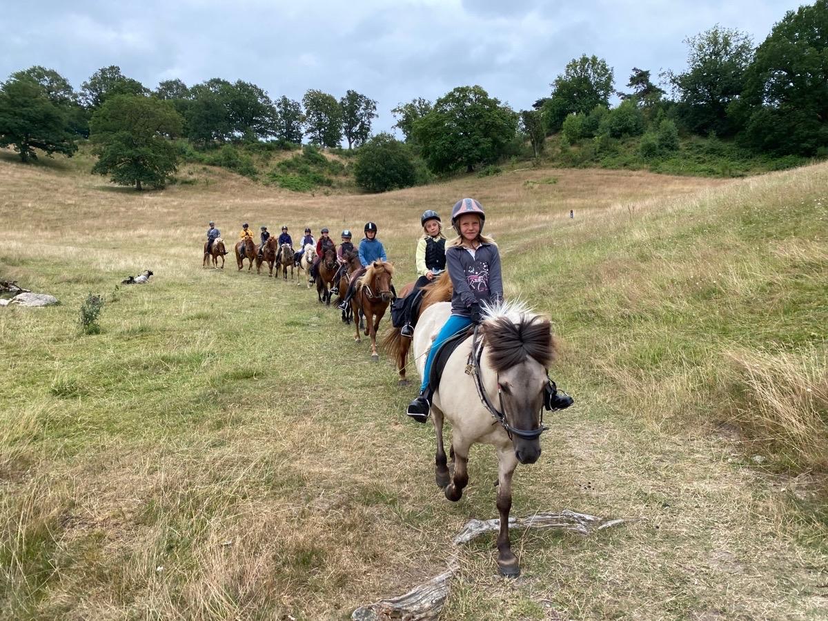 Islandskapsturen med ridelejr uge 29
