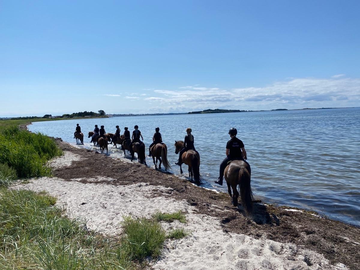 Strandtur med ridelejr uge 31