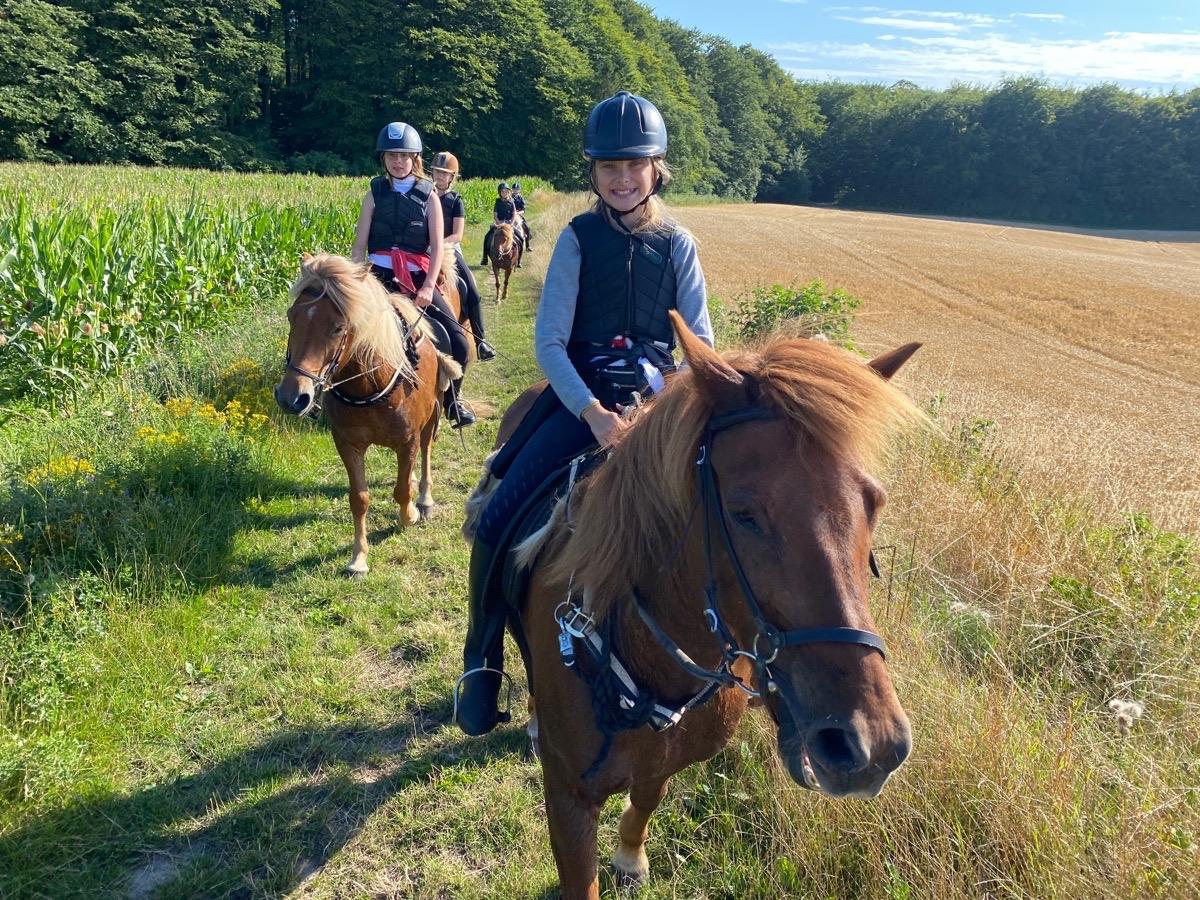 Islandskapsturen med ridelejr uge 31