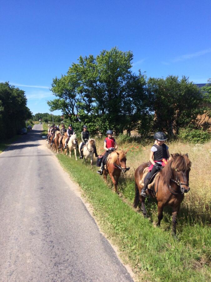 Islandskabsturen med ridelejren i uge 27