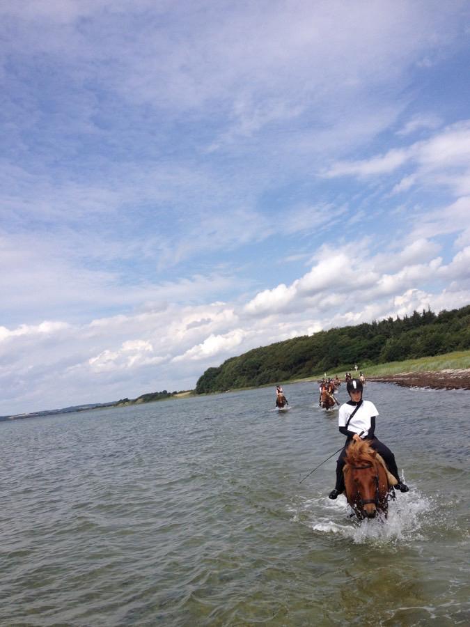 Strandturen på ridelejren i uge 31