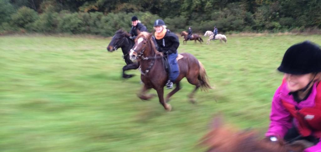 Der var gang i den på efterårsferiens første ridelejr i 2014 - se billederne her.